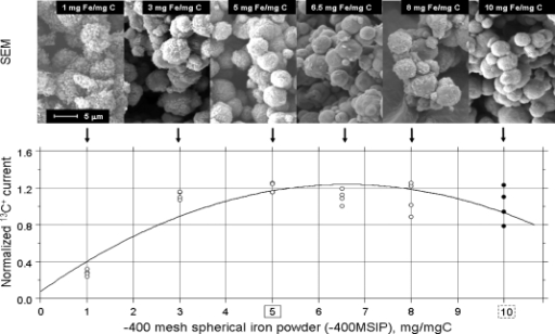 After CO2 reduction SEM pictures and n13C+ currents according to the mass of −400MSIP used. [The full circles did not confirm previous findings (abscissa broken rectangle),(15) instead the 5-mg quantity of −400MSIP (abscissa solid rectangle) was coated with a uniform fuzz of graphite and was associated with the highest n13C+ current. The regression equation was y = 0.0776 + 0.3516x −0.0266x2, r = 0.8661.]