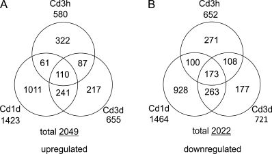Numbers of tag species differentially regulated during Cd treatment. The difference in the counts of individual tag species between the untreated library and Cd-treated libraries. Treatment with 0.1 μM CdCl2 for 3 h (Cd3h), 1 d (Cd1d), and 3 d (Cd3d) was evaluated by the SAGEbetaBin program with a 0.05 Bayes error rate (Vêncio et al., 2004). The numbers of significantly (A) up-regulated and (B) down-regulated tag species in three Cd-treated libraries are shown.