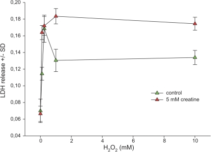Protective effect of creatine in hippocampal cell cultures challenged with oxidative stress.Hippocampal cells (DIV 15) were incubated with hydrogen peroxide in rising concentrations in absence or in presence of 5 mM creatine. After 24 h the LDH release into the cell culture supernatant was assessed. Total protein of the cell monolayer was used as a reference. Data are expressed as arbitrary units per mg protein +/− standard deviation. Each data point represents the mean of triplicates. Each experiment was independently performed in triplicate. Statistical analysis was performed by unpaired Student's T-test. *denotes statistical significance at a level of p<0.01.