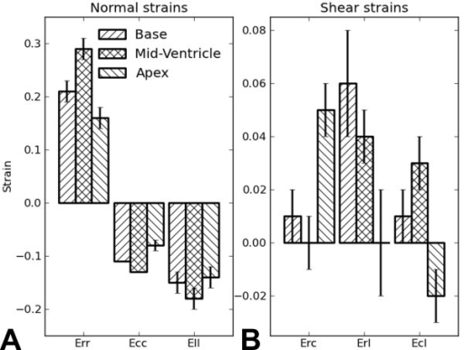Bar chart of the average end-systolic normal and shear strains.  Bar chart of the average end-systolic normal (A) and shear strains (B) at the basal, mid-ventricular, and apical levels for the 7 healthy mice measured by 3D cine DENSE in this study. Data are plotted as mean ± standard error.