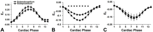 Normal strain-time curves for healthy mice measured by 3D cine DENSE. Normal strain-time curves for healthy mice measured by 3D cine DENSE. The average Err, Ecc, and Ell values for the 7 mice studied are plotted as a function of cardiac phase. Furthermore, separate curves are shown for the subendocardial and subepicardial layers. A statistically significant difference in Ecc between the two layers was detected (B). No significant differences between layers were found for Err and Ell, although both of these strains showed consistent trends towards larger absolute values in the subendo- vs. subepicardium. Data are plotted as mean ± standard error.