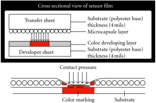 Cross sectional view of PRESSUREX film illustrating mechanism of color mapping from contact pressure.