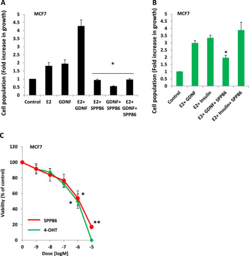 SPP86 inhibits RET- mediated proliferation. (A) Estrogen- deprived and serum starved MCF7 cells were left untreated or exposed to 1 ng/ml E2 and/or 10 ng/ml GDNF alone or in combination with 1 μg/ml SPP86 in phenol red- free media for 7 days. Proliferation was expressed as fold increase in growth relative the untreated control population. The data represent the mean of 3 experiments ± S. E; *p <0.05 treated vs. untreated for each series. (B) Estrogen- deprived and serum starved MCF7 cells were cultured in the presence of 1 nM E2 (estrogen) together with 10 ng/ml of GDNF or 10 ng/ml insulin in the presence or absence of 1 μM SPP86 for 72 h. Proliferation was expressed as fold increase in growth relative the untreated control population. The data represent the mean of 3 experiments ± S. E; *p <0.05. (C) Estrogen- deprived and serum starved MCF7 cells exposed to increasing concentrations of SPP86 or 4-OHT in phenol red- free media containing 1 ng/ml E2 and 10 ng/ml GDNF for 7 days. Viability was expressed as a percentage of the untreated control population. The data in each panel represent the mean of 3 experiments ± S. E.; *p <0.05, **p <0.0001.