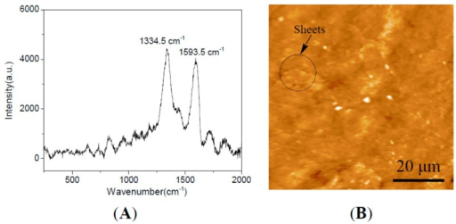 (A) Raman spectra; and (B) AFM of GNS-based epoxy resin coating.