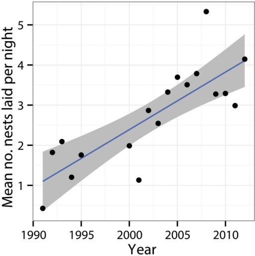 Trends in the average number of hawksbill nests laid per night in the Arnavons group during the peak season (May-August) between 1991–2012.Grey bars show 95% confidence intervals around the regression line.