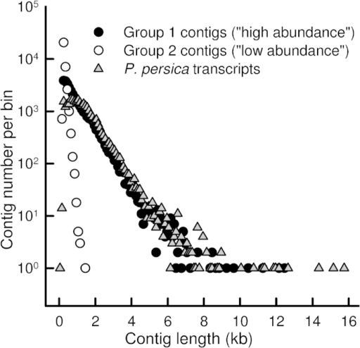 Length distribution of assembled sweet cherry 'Regina' contigs in Group 1 ('high abundance', 34695 contigs, length 200–12 485 bp) and Group 2 ('low abundance', 32 712 contigs, 107–1482 bp). Length distribution of predicted transcripts in the P. persica genome (v.1.0) (28 702 sequences, 96–15 738 bp) is shown for reference. The x-values give the center of each bin; bin width is 100 bp, except for the first bin which is from 1 to 98 bp. Note logarithmic scale of the y-axis; bins with 0 sequences not shown.