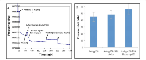 Response of the BNS sensor to gp120 binding: (A) The sensor resonant frequency change following sequential steps of the immobilization process and sensor exposure to gp120. (B) The difference in frequency response after each successive step of the BNS reaction.