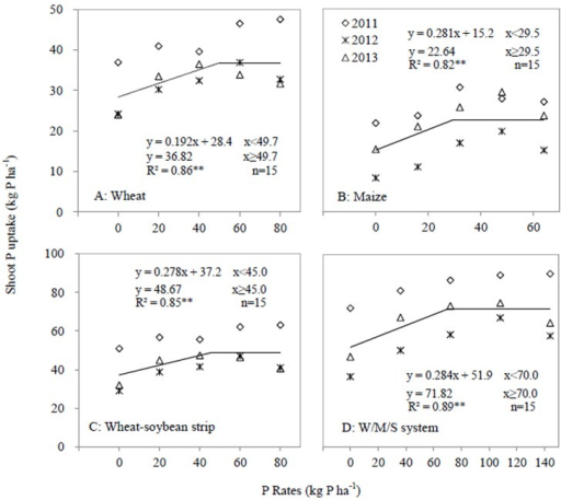 Shoot P uptake as affected by P application rates in 2011, 2012 and 2013.A, Wheat; B, Maize, C Wheat-soybean strip; D, W/M/S system. Each data point was the mean of four replicates.
