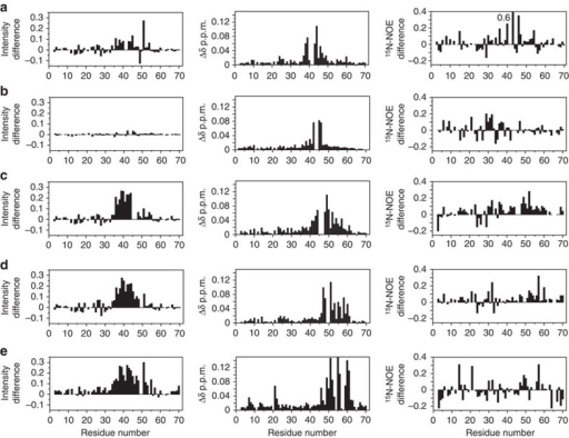 Comparison of binding of Mn2+-DTPA-(A)-H2, chemical shift differences and 15N{1H}-NOEs of wild type and mutants of RXFP(1–72).The first column is the difference (mutant less wild type) in peak intensities from a titration of 50 μM mutant and wild-type LDLa-linker with 0.2 μM Mn2+-DTPA-(A)-H2. A positive difference indicates less binding of Mn2+-DTPA-(A)-H2 to the mutants. The second column is the average 1HN and 15N chemical shift differences (Δδ) of mutant to wild-type protein. The third column is the difference (wild-type less mutant) of 15N{1H}-NOE of mutant and wild-type LDLa-linker. A positive difference indicates a lower 15N{1H}-NOE in the mutant. Experiments were conducted at pH 6.8 and 25 °C on (a) G41A/D42A, (b) N43A/N44A, (c) G45A/W46A, (d) F50A, and (e) F54A/Y58A. Additional mutants and data are in Supplementary Fig. 6.