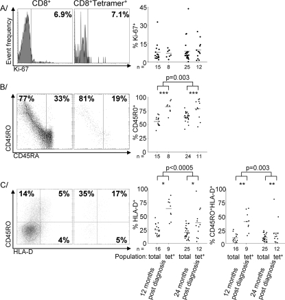 Tetramer+ CD8 T-cells are more activated than the overall CD8 T-cell population, but no more so at 24 than 12 months post-diagnosis.A histograms of the expression of Ki-67 in the overall CD8 T-cell population and tetramer+ subpopulation of a representative sample collected 24 months post-diagnosis, with individual value plots indicating proportions of Ki-67+. B scatter plots of the expression of CD45R0 and CD45RA in the overall CD8 T-cell population and tetramer+ subpopulation of a representative sample collected 24 months post-diagnosis, with individual value plots indicating proportions of CD45R0+ cells and the CD45 ratio derived from all samples. C scatter plots of the expression of CD45R0 and HLA-D in the overall CD8 T-cell population and tetramer+ subpopulation of a representative sample collected 24 months post-diagnosis, with individual value plots indicating proportions of HLA-D+ and CD45R0+HLA-D+ cells and the CD45 ratio derived from all samples. Significances indicate differences between both overall and tetramer+ subpopulations. Grey bars indicate means. Significant differences between tetramer+ and overall CD8 T-cell populations are indicated by *p<0.05, **p<0.005 or ***p<0.0005.