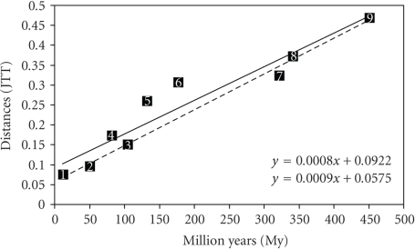 Regression line of divergence times derived from the fossil record (Table 1) and the correspondent distances (JTT method) in different vertebrate pairs. For the continuous line: 1. M. musculus – R. norvergicus, 2. X. laevis – X. tropicalis, 3. H. sapiens – B. taurus, 4. H. sapiens – M. musculus, 5. H. sapiens – M.  domestica, 6. H. sapiens – O. anatinus, 7. H. sapiens – G. gallus, 8. H. sapiens – X. laevis, 9. H. sapiens – T.  rubripes. For the dashed line: same pairs, comparisons involving nonplacental mammals (points 5 and 6) were excluded.