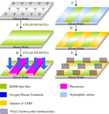 Synthetic route toward PHEMA brushes patterned through OPT, advanced lithography, and ATRP on Si wafers