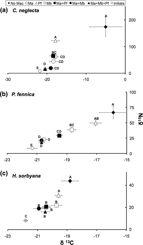 Isotope values (±SE) for aC. neglecta (n = 5); bP. fennica (n = 7); cH. sorbyana (n = 7) in treatments with different combinations of macrofauna species. NoMac no macrofauna; MaM. affinis alone; PfP. femorata alone; MbM. balthica alone; Ma + PfM. affinis + P. femorata; Ma + MbM. affinis + M. balthica; Ma + Pf + Mb all three macrofauna species; Initial natural isotope values before experiment. Different letters indicate significant differences (nested ANOVA) in nitrogen isotope values among treatments for the three species (P < 0.05). Statistical differences in carbon isotope values followed the same pattern but are not shown here (see text for statistical details)