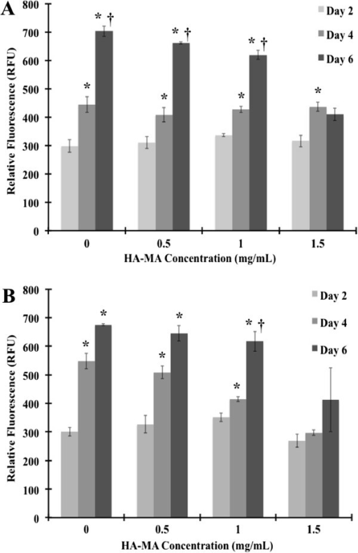 BMSC metabolic activity in fibrin/HA-MA hydrogels with varying HA-MA concentrations. (A) 4 mg/mL and (B) 6 mg/mL fibrinogen. * – Statistically significant difference between successive days for a given HA-MA concentration (p < 0.05). † – Statistically significant difference between successive HA-MA concentrations for a given day (p < 0.05).