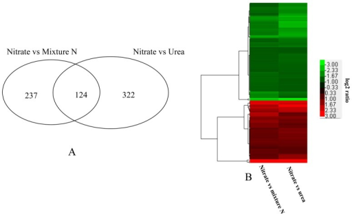 Specific genes transcriptionally regulated by urea.A) Number of common genes differentially regulated between the mixture N and urea groups compared with the reference nitrate group; B) the pattern of regulation of these common genes.