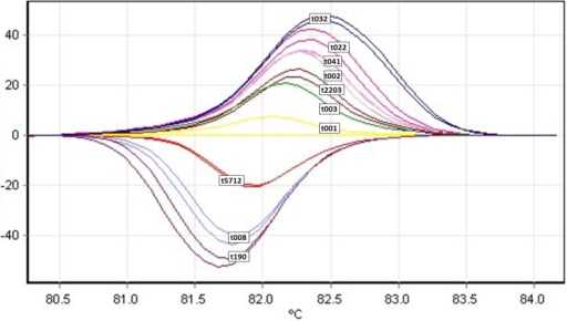 HRM curve profiles of the ten most frequent spa types performed on a Rotorgene Q real-time instrument.t032, t022, t041, t2203, t001, t002, t003, t5712, t008, t190 double spiked with t030 and t003 genomic DNA.