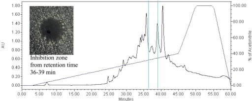 RP-HPLC Profile.RP-HPLC profile of active faction isolated from Weissella confusa with antimicrobial activity detected during 36 to 39 minute elution period.