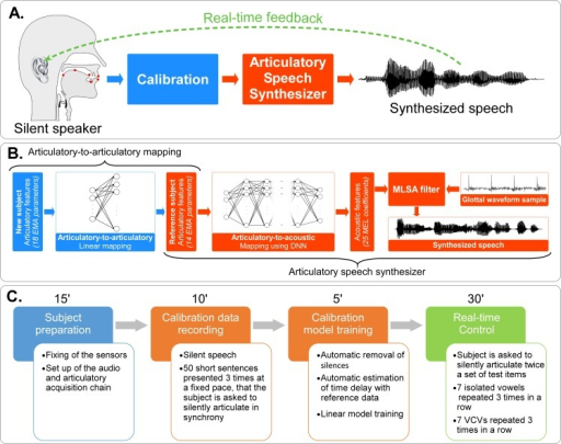 Real-time closed loop synthesis.A) Real-time closed-loop experiment. Articulatory data from a silent speaker are recorded and converted into articulatory input parameters for the articulatory-based speech synthesizer. The speaker receives the auditory feedback of the produced speech through earphones. B) Processing chain for real-time closed-loop articulatory synthesis, where the articulatory-to-articulatory (left part) and articulatory-to-acoustic mappings (right part) are cascaded. Items that depend on the reference speaker are in orange, while those that depend on the new speaker are in blue. The articulatory features of the new speaker are linearly mapped to articulatory features of the reference speaker, which are then mapped to acoustic features using a DNN, which in turn are eventually converted into an audible signal using the MLSA filter and the template-based excitation signal. C) Experimental protocol. First, sensors are glued on the speaker's articulators, then articulatory data for the calibration is recorded in order to compute the articulatory-to-articulatory mapping, and finally the speaker articulates a set of test items during the closed-loop real-time control of the synthesizer.