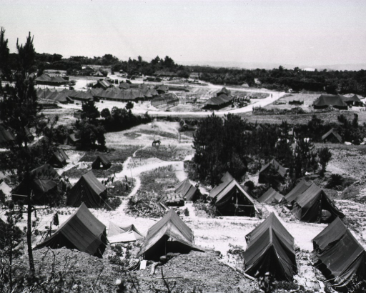 <p>Overhead view of a hilly, sandy terrain.  Most of the tents, pitched across a wide area, are finished.  A partially-erected tent is seen in the background.  A horse grazes in the middle distance and a few servicemen can be seen.</p>