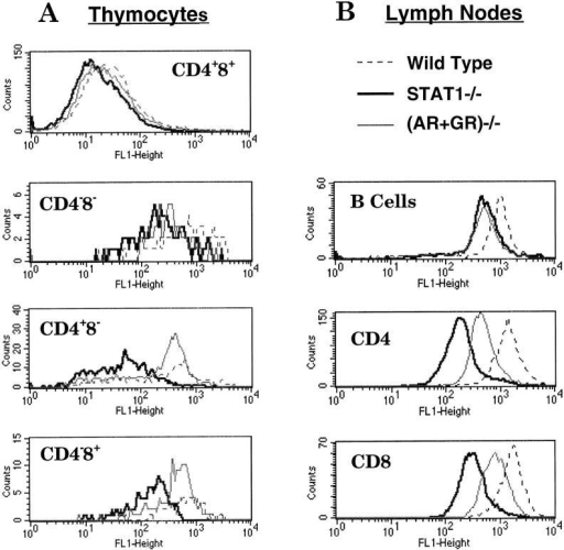 Reduced surface expression of MHC class I antigens in different subsets of STAT1−/− lymphocytes. Freshly isolated lymphocytes from thymi (A) or lymph nodes (B) of wild-type (dashed lines), STAT1−/− (bold lines), or (AR+GR)−/− (thin lines) mice were triple stained with CD4–TC, CD8–PE, and MHC class I–FITC, followed by FACS™ analysis. CD4−CD8− lymphocytes from lymph nodes were regarded as B cells.