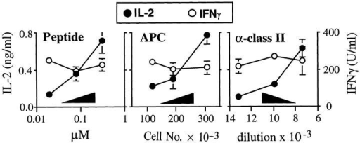 IL-12 sustains T  cell IFN-γ production at suboptimal levels of stimulation.  Splenocytes from Ii+ mice were  incubated with varying amounts  of the LACK peptide epitope  (Peptide; 5 × 105 APCs/well),  inoculated into wells at varying  numbers (APCs; 2.5 μM peptide), or inoculated into wells using a fixed number of cells and  amount of peptide (α–class II;  5 × 105 APCs/well, 1.25 μM  peptide). After washing, 2 × 105  TCR transgenic lymph node T  cells were added to the wells in  the presence of rIL-12 (2 ng/ml).  In the right panel, anti-class II mAb M5/114 was titrated into the wells using the dilutions shown. Supernatants were collected after 48 h and assayed for  IL-2 and IFN-γ using ELISA. Values represent means and standard deviations of triplicate determinations, and are representative of three separate experiments.