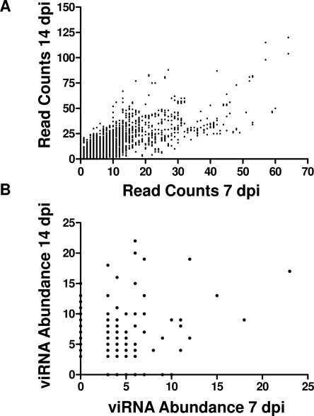 Targeting of the WNV Genome by RNAi at 7 and 14 Days Post Infection Is Correlated.(A) Count of reads aligning to each genome position at 7 and 14 days, n = 11,029, Spearman r = 0.7610, p<0.0001. (B) Count of abundant individual sequence reads in libraries obtained at 7 and 14 days, n = 433, Pearson R-squared = 0.03674, p<0.0001.