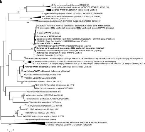 "a Phylogenetic tree of 16S rRNA gene sequences of the NC10 phylum, including sequences of nine different WWTPs located in The Netherlands (bold). The phylogenetic tree was constructed using neighbor-joining and bootstrap analysis of 1,000 replicates. All sequences found are represented in group a of the NC10 phylum (group a, b, c, and d are described in Ettwig et al. 2009). b Phylogenetic tree of pmoA sequences including clones from inoc Lieshout, enr Lieshout, enr 332 day Lieshout, and WWTP Lieshout. The phylogenetic tree was constructed using neighbor-joining and bootstrap analysis of 1,000 replicates. The clones indicated with ""a"" were obtained with the primers A189_b and 682R, clones indicated with ""b"" were obtained with a nested approach using primers A189_b and cmo682 as a template for primers cmo182 and cmo568. Clones obtained with a direct PCR using the primers A189_b and cmo682 are indicated with ""c"". Clones obtained with primers cmo182 and cmo568 are indicated with ""d"""