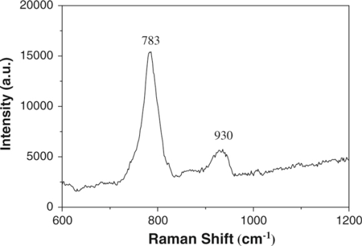 Raman spectra of the SiC nanochains.
