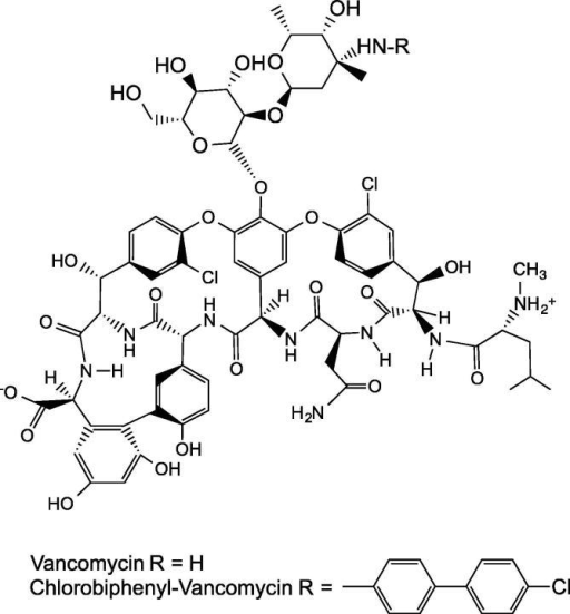 The structure of vancomycin and its derivative chlorobiphenyl vancomycin (CBP-V), which showed antibacterial activity against vancomycin-resistant Enterococci (VRE) [85] (discussed in Section 3.5).