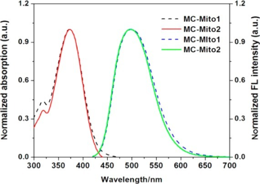Normalized UV spectraand FL spectra of MC-Mito1 (dashed lines) and MC-Mito2 (solid lines) in a DMSO solution.