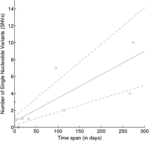 Molecular clock estimate calculated using Bayesian inference on genetic data from the first and last Klebsiella pneumoniae isolates producing K. pneumoniae carbapenemase sampled from study individuals. The mean molecular clock estimate (solid line) and 95% credibility interval (dashed lines) are shown.
