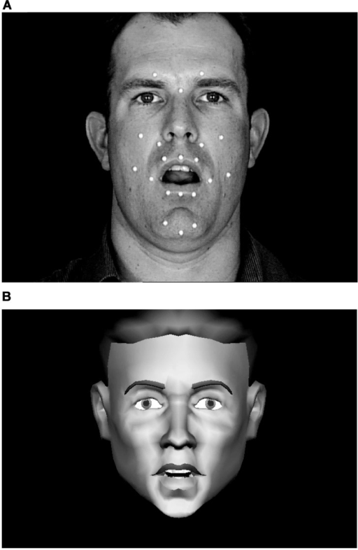 Still frames from natural and synthetic speech stimuli. The white dots on the face of the talker (A) are retro-reflectors that were used during video recording for motion-capture of 3D motion on the talker's face. This 3D motion drove the motions of the synthetic talking face (B). Video and synthetic stimuli were presented in full color against a dark blue background.