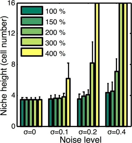 Influence of signaling noise on niche dynamics and stability.Plot of stem cell niche height at steady state as a function of Wnt production rate and the amplitude of imposed noise (σ). Noise levels for the exogenous Wnt and BMP gradients are considered to be similar, so in each case we consider each to have noise amplitude of 0, 0.1, 0.2, and 0.4 respectively. Mean and standard deviation over an ensemble of 10 simulations at each production level and noise amplitude is reported. Cases where the bar extends to the top indicate the niche is unstable and expands to occupy the entire crypt.