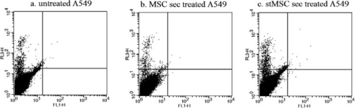 AnnexinV-PI apoptosis assay on A549 cell line treated with hWJ-MSC seretome. There is no significant difference between a; untreated A549, b; A549 treated with hWJ-MSC secretome and c; A549 treated with IFNγ stimulated hWJ-MSC secretome.
