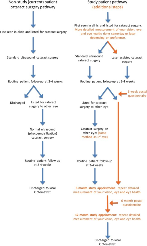 Summary trial participant pathways.