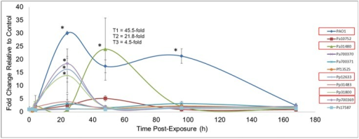 Serum Amyloid A during Pseudomonas Exposure.Balb/c mice were endotracheally instilled with saline or 106 cfu of each Pseudomonas strain. At various times following exposure, blood was collected by cardiac puncture. Blood was processed for SAA detection by ELISA. Data is expressed as the fold-change compared to control values ± relative error (n = 3). For Pa31480 treatment at 48 h, the SAA values for each mouse are indicated by T1, T2, and T3. The variation in these values explains the large relative error observed. Asterisks indicate statistically different values compared to saline exposures, as determined using ANOVA and Dunnett's Multiple Comparison Test (p < 0.05). Bacteria with significant differences are indicated with red boxes in the graph legends.