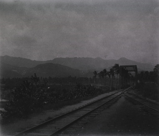 <p>View of the railroad tracks leading to Firmeza.</p>
