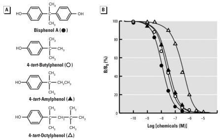 Chemical structure of BPA and its derivatives lacking the phenol group and their dose–response curves in the radioligand receptor binding assay for ERR-γ . (A) Chemical structure of BPA and its derivatives with the alkyl group at the position of phenol group: 4-tert-butylphenol (a methyl group); 4-tert-amylphenol (an ethyl group); and 4-tert-octylphenol (a tert-butyl methyl group). (B) Binding activities of BPA, 4-tert-butylphenol, 4-tert-amylphenol, and 4-tert-octylphenol examined by the competitive binding assay using [3H]BPA and GST-ERR-γ –LBD; representative curves indicate the IC50 value closest to the mean IC50 from at least five independent assays for each compound.