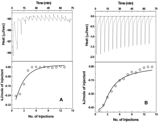 ITC analysis of the interaction between substrate, OAS (O-acetylserine) and OASS. Data is plotted as heat signal (μJ/sec) versus time (min) in the upper panel in each fig. Lower panel-integrated heat responses per injection from panel A plotted as normalized heat per mole of injectant. The solid line represents the best fit of the data to a two independent site binding model (eqn 2). (A) Titration of StOASS (4.5 μM) with OAS (5 mM) at 25°C. (B) Titration of HiOASS (4.5 μM) with OAS (5 mM) at 25°C. Both titrations were performed in the same buffer (20 mM Tris, pH 8.0, 50 mM NaCl).