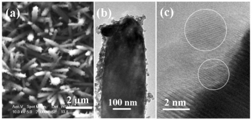 Structural characterization of QD-decorated ZnO NRAs. (a) Top-view SEM image of ZnO nanorods decorated with CdSe QDs; (b) TEM of a ZnO nanorod coated with CdSe QDs; (c) HRTEM image of CdSe QDs on a ZnO nanorod, indicated by white circles.