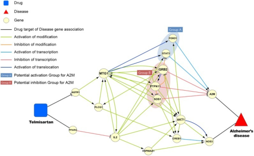 Visualization of potential pathway associated with targets of telmisartan and genes related to Alzheimer's disease.