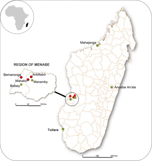 Location of sampling collection. Map of Madagascar showing sites of bats capture (green circle) and sites from the Region of Menabe where at least one CoV was detected from locally occurring bats (Red circles).