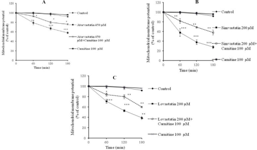 Statins-induced collapse in cellular mitochondrial potential (ΔΨm) and the role of L-carnitine administration. A; atorvastatin, B; simvastatin, C; lovastatin. Rhodamine 123 test was employed to assess the mitochondrial membrane potential. ***; Indicates P<0.001 versus control group. **; Indicates P<0.01 versus drug-treated groups. *; Indicates P<0.05 versus drug-treated groups.