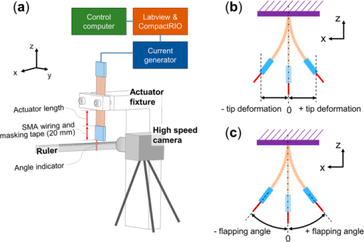Setup and methods for observing the performance of the actuator.(a) Experimental setup, (b) Measurement of the tip deformation and (c) flapping angle.