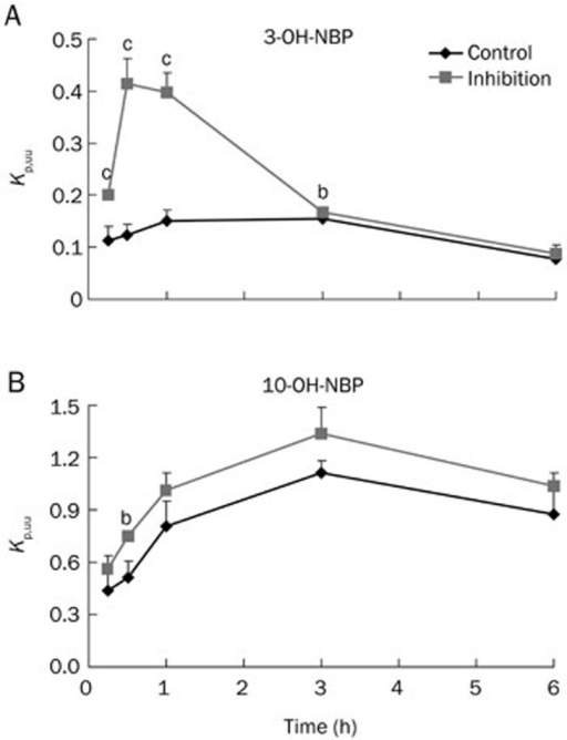 Kp,uu values of 3-OH-NBP (A) and 10-OH-NBP (B) in rats treated with or without P-gp and BCRP inhibitors. Mean±SD, n=3. bP<0.05, cP<0.01 vs control.