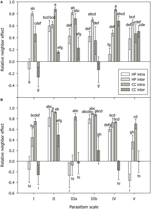 Relative neighbor effect (RNE) in mycorrhizal (A) and non-mycorrhizal (B) plants of Hieracium pilosella (HP, white) and Corynephorus canescens (CC, gray) in intraspecific (intra, open bars) and interspecific (inter, dotted bars) competition under conditions along a theoretical scale of mycorrhizal parasitism potential (parasitism scale) with I standing for hypothesized strong mutualism to V standing for hypothesized parasitism. Although, the parasitism scale can only be applied to mycorrhizal plants, the results for non-mycorrhizal plants were arranged in the same way for reasons of clarity. For calculation of RNE please see Materials and Methods Section. Different letters indicate significant differences at P = 0.05 (ANOVA). Means ± s.e., n = 5.
