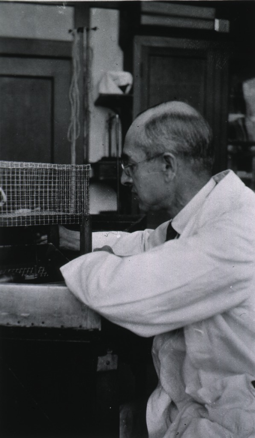 <p>3/4 length, left profile, seated at laboratory table.</p>