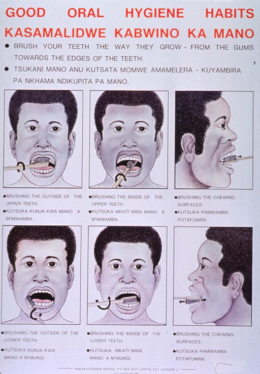 <p>White poster with red and black lettering.  Titles at top of poster.  Poster features a significant amount of text in English and Chichewa describing the proper method of toothbrushing.  Visual image is a six-panel series of illustrations showing how to clean the outside, inside, and chewing surfaces of the upper and lower teeth.  Publisher information at bottom of poster.</p>
