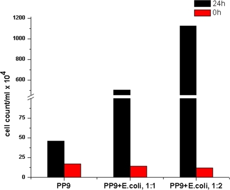 Cell counts of GFP expressing PP9 cells in presence and absence of E. coli XL-1 Blue counterpart obtained from FACS.
