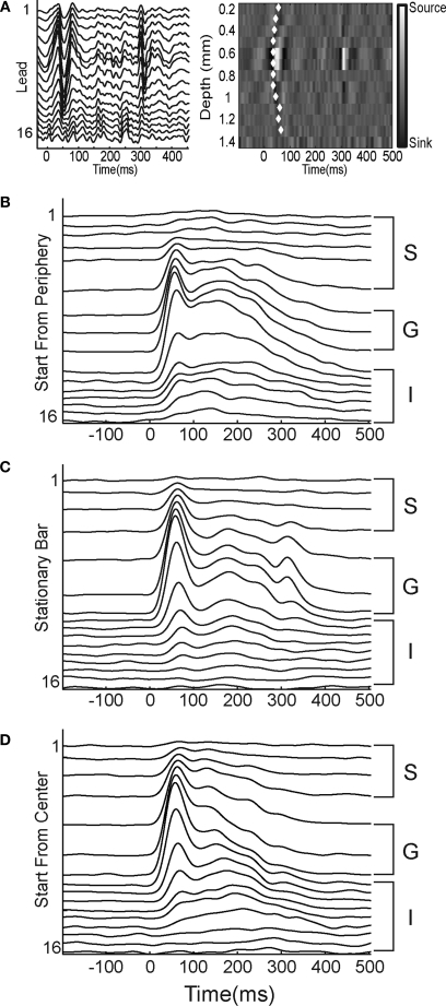 Laminar MUA at the retinotopic sites of the appearance of the bar. (A) Laminar local field potentials (left) and CSD (right) in response to a stationary bar presented for 250 ms at the CFOV. Note the sinks in layer IV 30–35 ms after the start of the stimulus and again at 290 ms (OFF response). The white diamonds mark the onset of statistically significant MUA on each lead (p < 0.01, see Materials and Methods). (B–D) Laminar PSTHs, average of 50 trials, filtered with a 10 ms Gaussian temporal filter. S supragranular layers, G granular layer; I infragranular layers of the moving bar starting from the peripheral FOV (B), the stationary bar (C), and the moving bar starting from the CFOV (D). Note similarities in the ON responses.